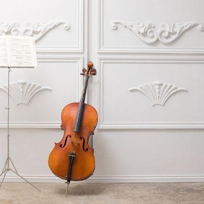¿Cuáles son los instrumentos de cuerda frotada?
